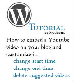 Youtube video in WordPress and customize