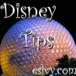 Disney Parks Tips